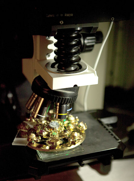 złota zapona pod mikroskopem