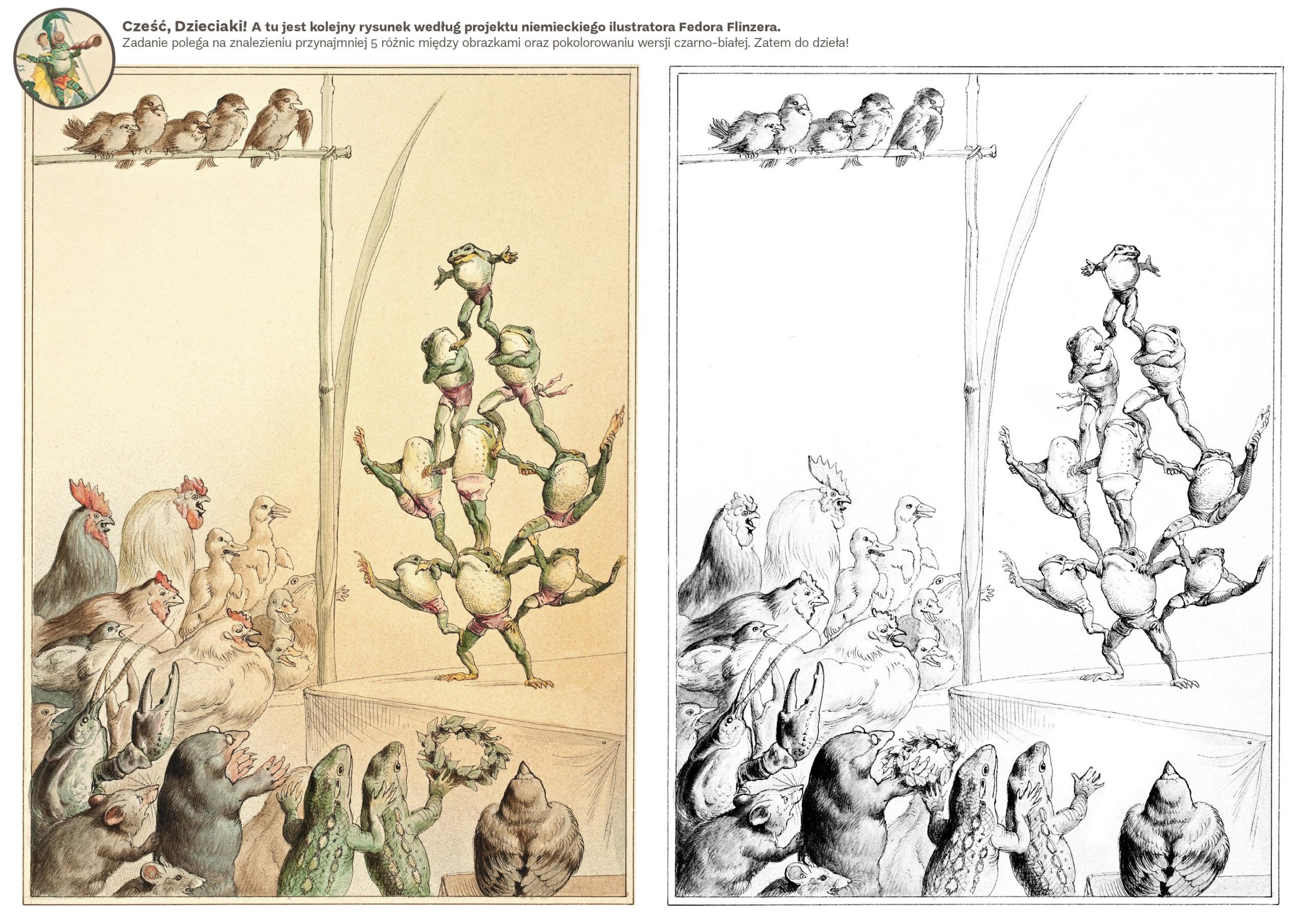 Ilustracja Fedora Flinzera