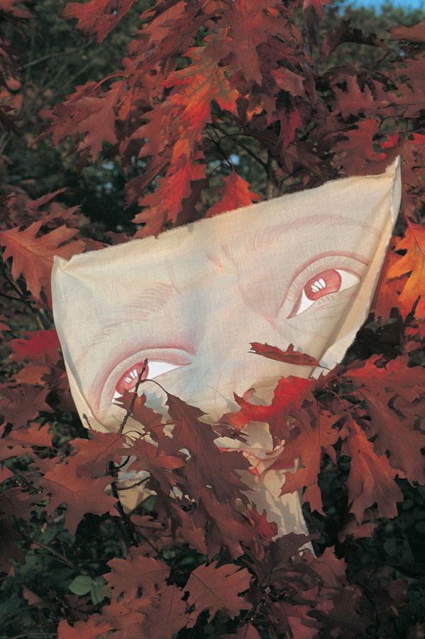 namalowana nasurówce bawełnianej tuszem iakrylem twarz zwyeksponowanymi oczami, wtle czerwone jesienne pnącze
