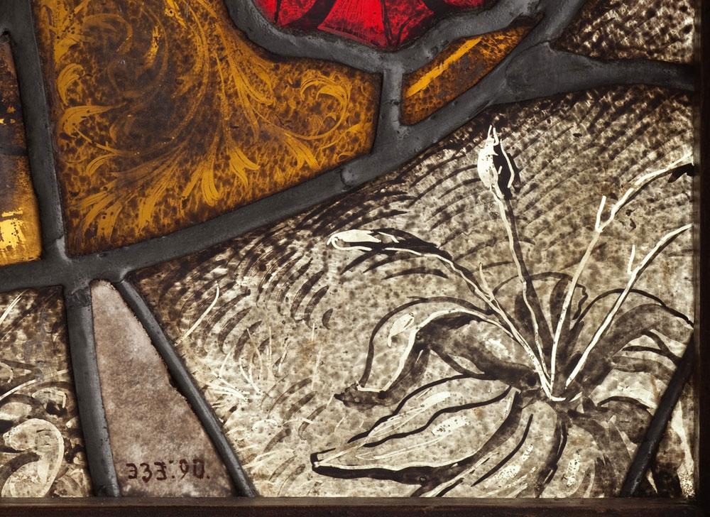 Fragment witraża zbabką lancetowatą